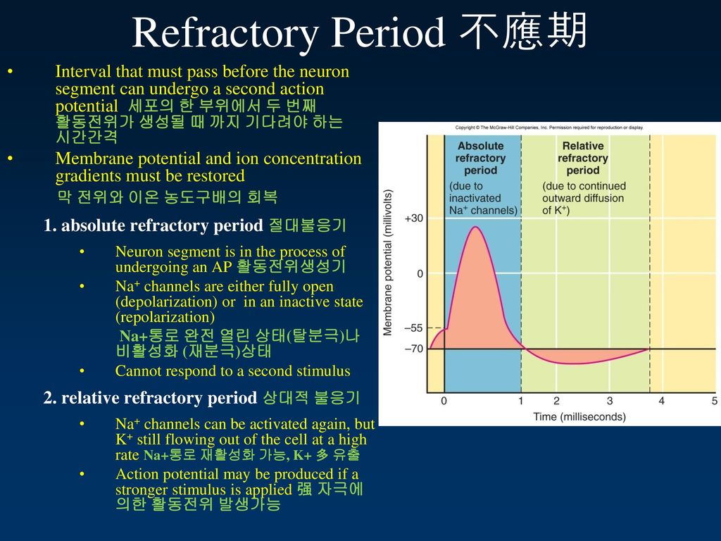 male refractory period Has anyone used a drug such as dostinex to reduce refractory period for more frequent orgasms i read that the record for male orgasms is six in thirty six minutes.
