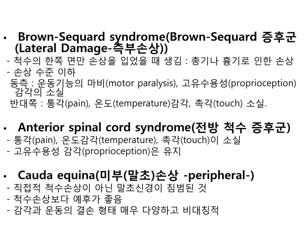 Brown-Sequard syndrome(Brown-Sequard 증후군(Lateral Damage-측부손상))