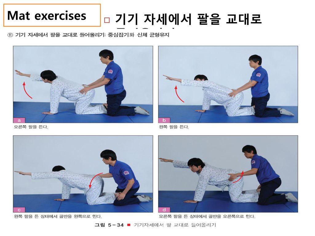 Mat exercises 기기 자세에서 팔을 교대로 들어올리기
