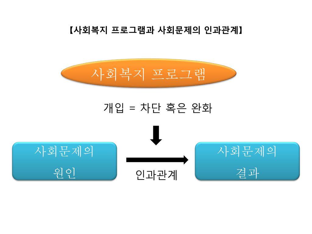【사회복지 프로그램과 사회문제의 인과관계】