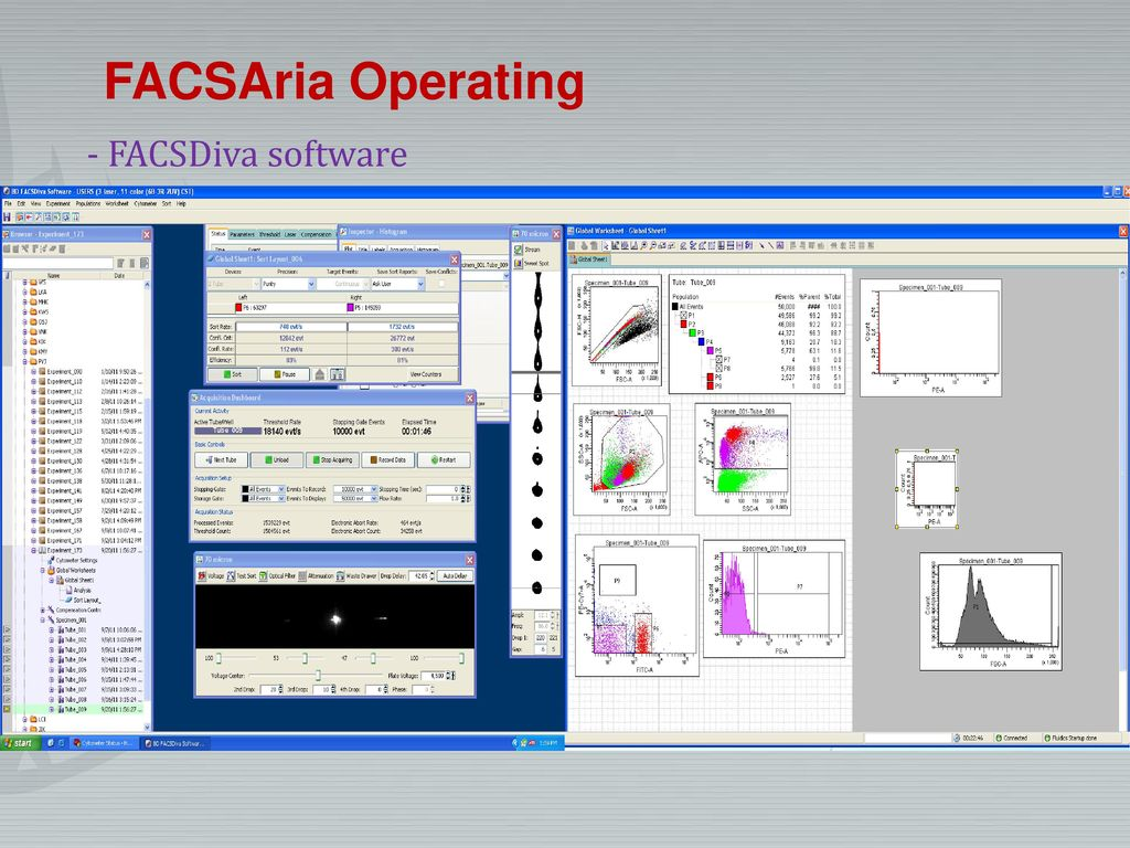 FACSAria Operating - FACSDiva software