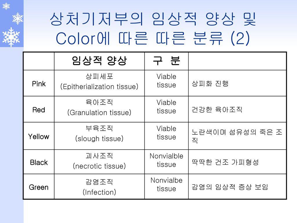 상처기저부의 임상적 양상 및 Color에 따른 따른 분류 (2)