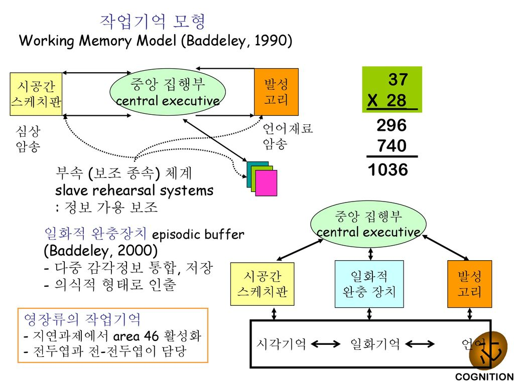 Critically evaluate baddeley s working model of memory