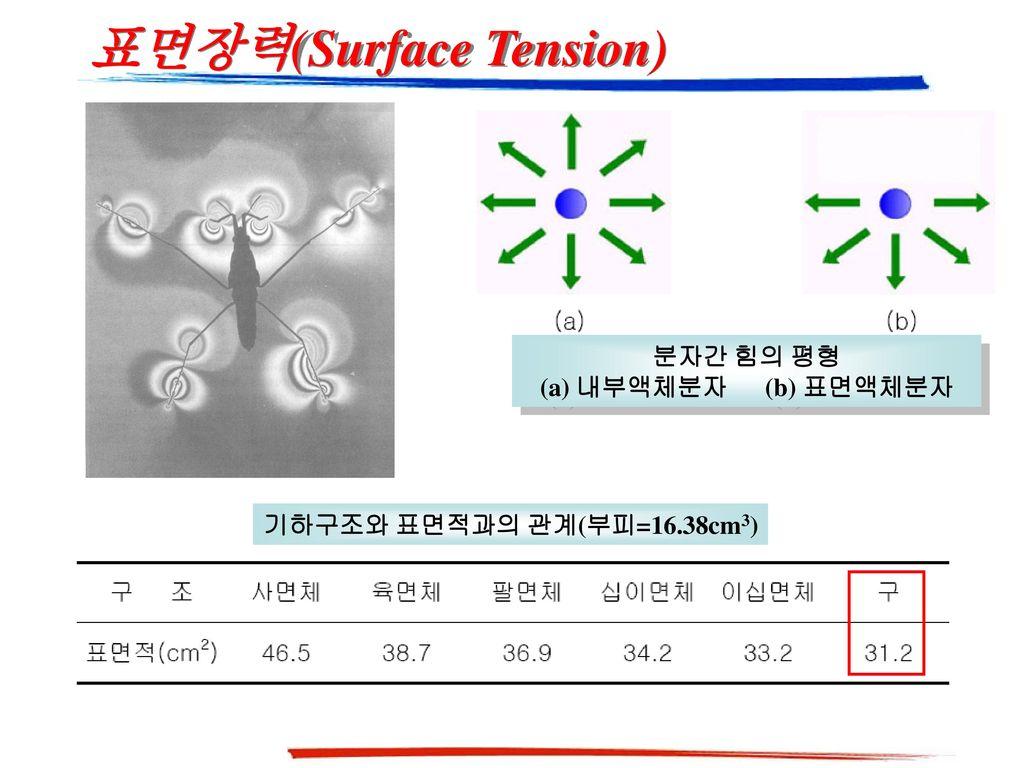 분자간 힘의 평형 (a) 내부액체분자 (b) 표면액체분자