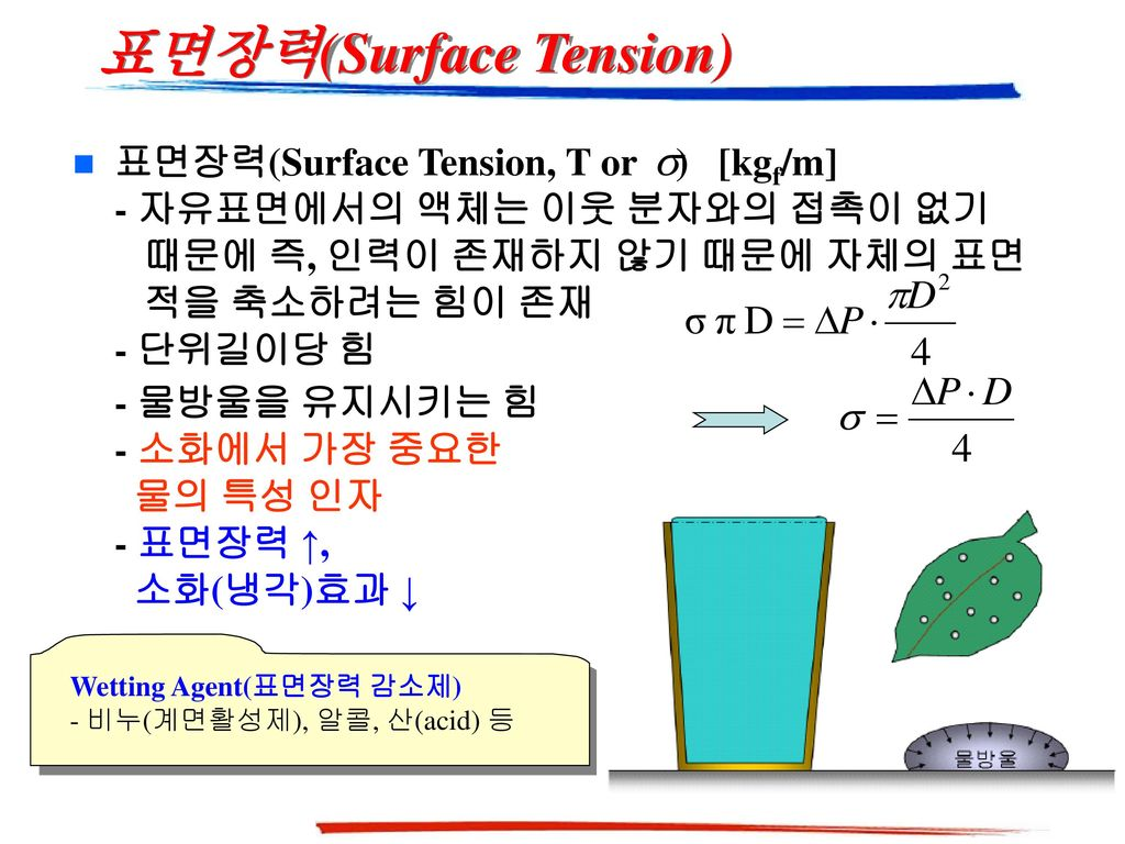 표면장력(Surface Tension)