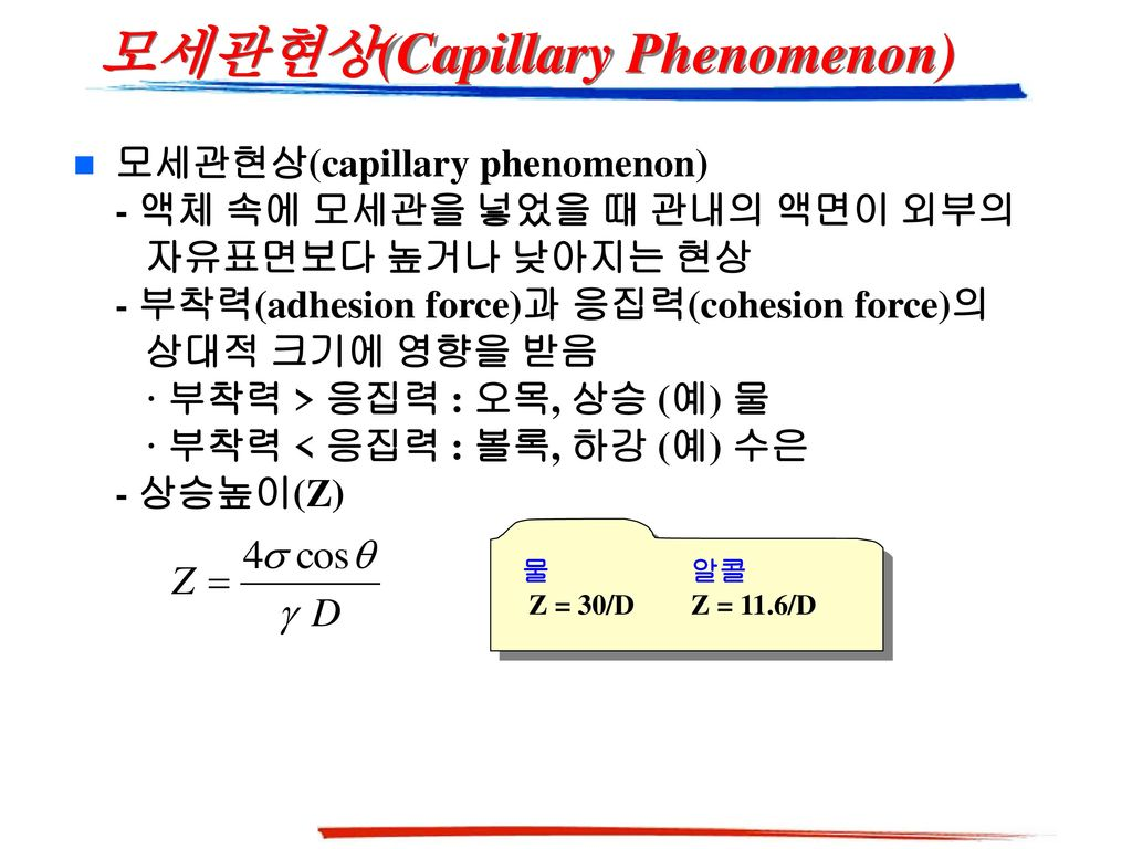 모세관현상(Capillary Phenomenon)