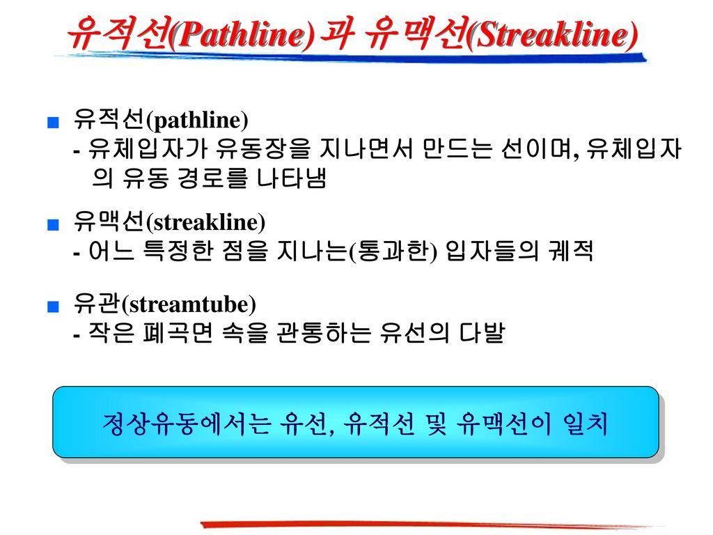유적선(Pathline)과 유맥선(Streakline)