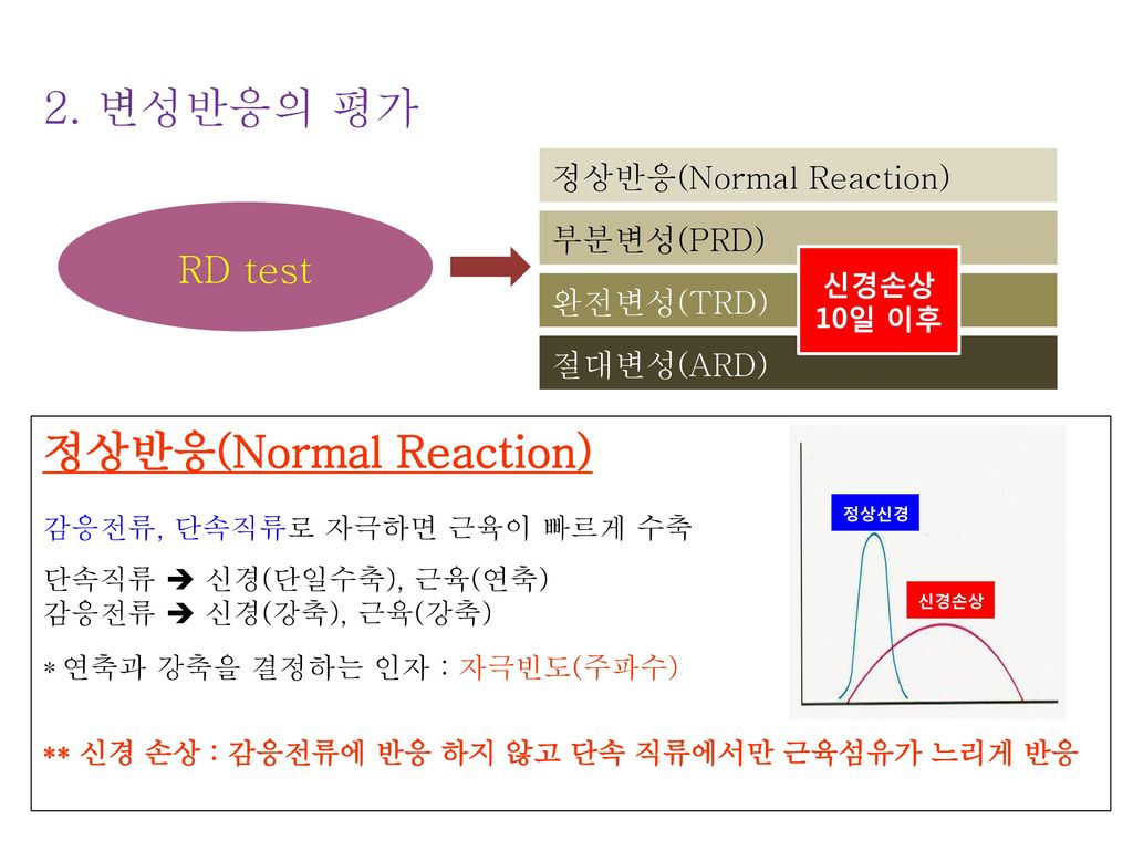 정상반응(Normal Reaction)