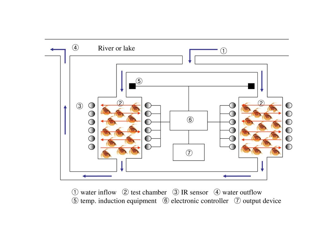 River or lake ①. ③. ⑦. ④. ⑤. ⑥. ②. ① water inflow ② test chamber ③ IR sensor ④ water outflow.