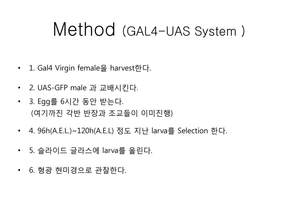 Method (GAL4-UAS System )