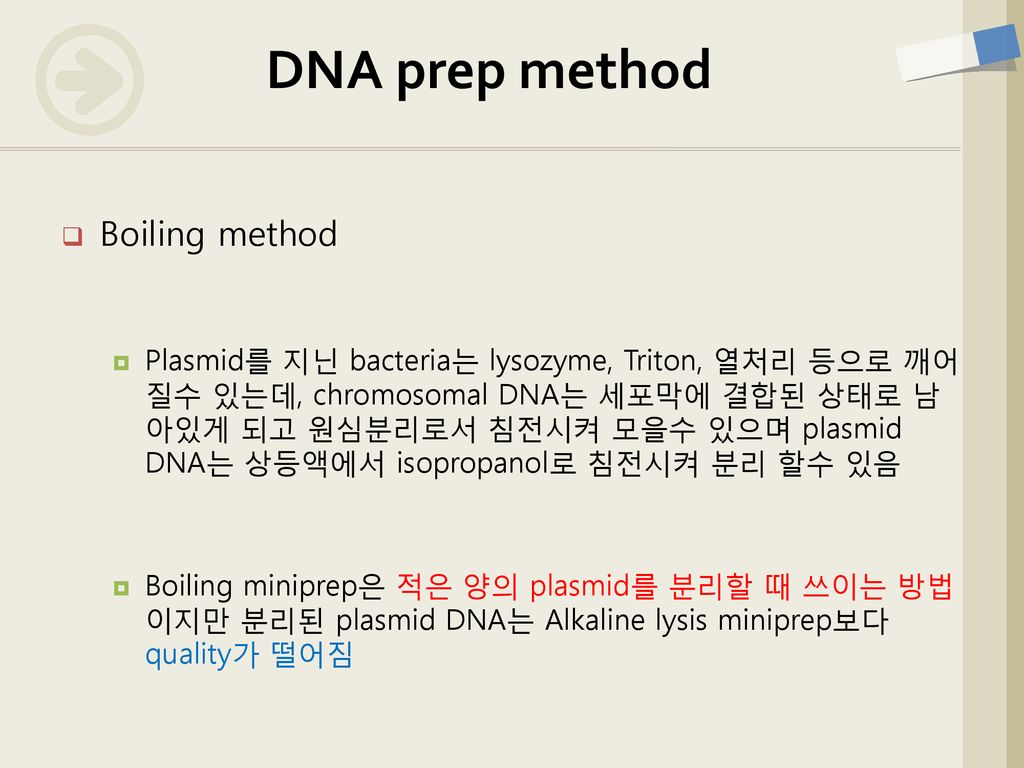 DNA prep method Boiling method