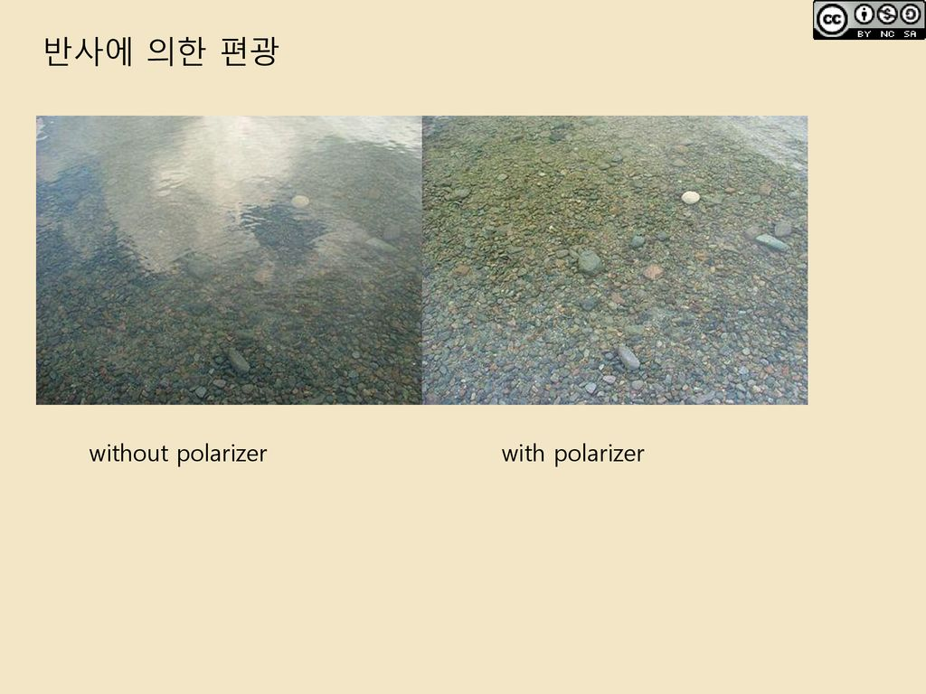반사에 의한 편광 without polarizer with polarizer
