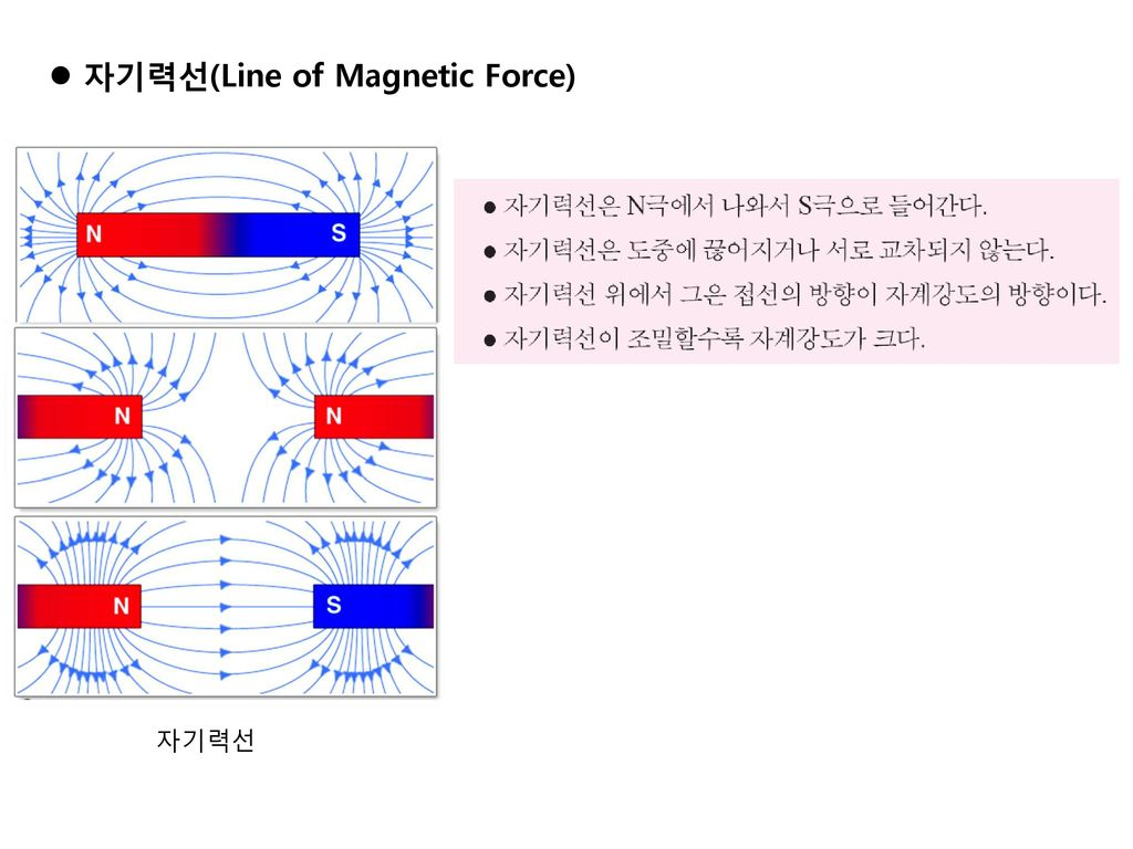 자기력선(Line of Magnetic Force)