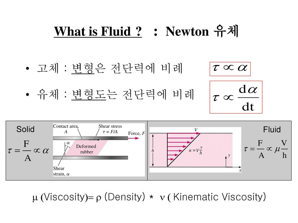 What is Fluid : Newton 유체