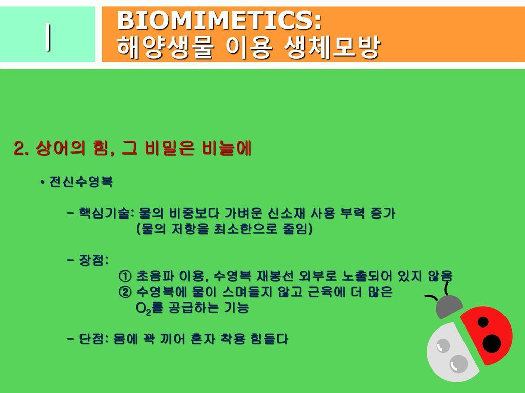 c07a6427ccd I BIOMIMETICS: 해양생물 이용 생체모방 2. 상어의 힘, 그 비밀