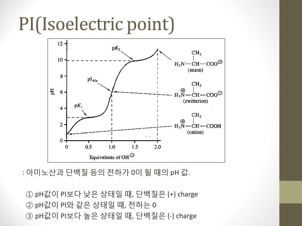 PI(Isoelectric point)
